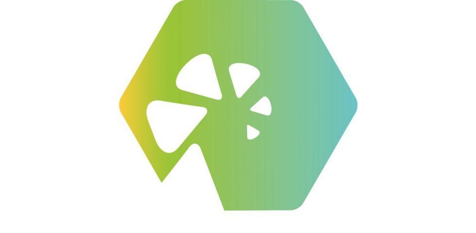 Colaboración innovativa en la creación de un proyecto de apoyo digital a la terapia.